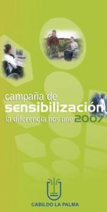 revista45_lapalma_cabildo_3