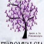 Fibromialgia2014-3