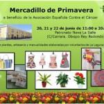 AECCmercadilloprimavera2014