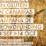 crowdfunding_acet01