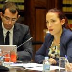 patricia hernandez Comisión parlamentaria 2015