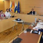 tenerife Comisión Medio Ambiente 2015