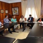 tenerife Reunión comisión hospitales 2015
