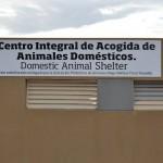 adeje CIAADA animales 2015