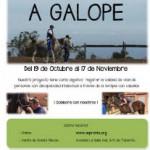 tenerife Aspronte-Campaña A Galope 2015