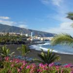 puerto cruz Playa Jardín 2016