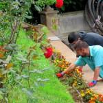 los realejos formacion jardineria 2017