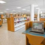 tegueste Biblioteca 2017