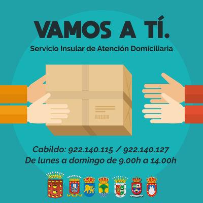 Servicio de Atención Domiciliaria ´Vamos a ti`, para hogares dependientes
