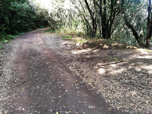 Recuperación de senderos en el Parque Rural de Anaga