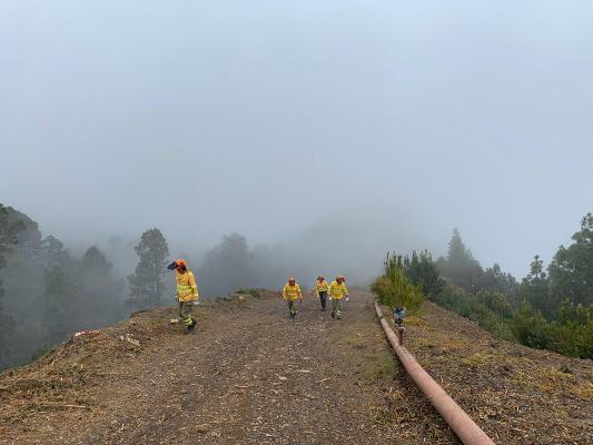 Mantenimiento y limpieza en el cortafuegos y la pista forestal de Gallegos
