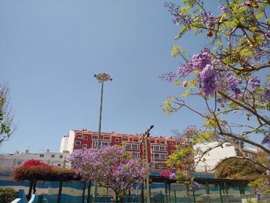Renovación de la electrificación de los grandes parques urbanos