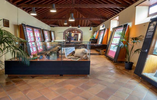 La Casa del Vino y sus museos reabren sus puertas