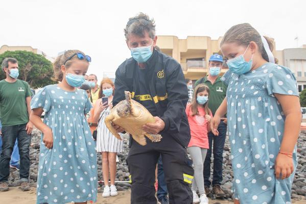 La tortuga que perdió dos falanges ya surca los mares