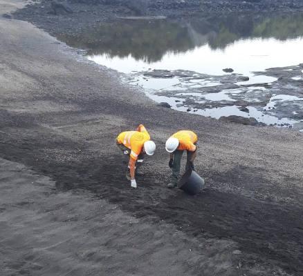 La Gomera realiza trabajos en espacios naturales de la isla