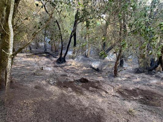 Extinguido el conato de incendio de la zona de Las Creces