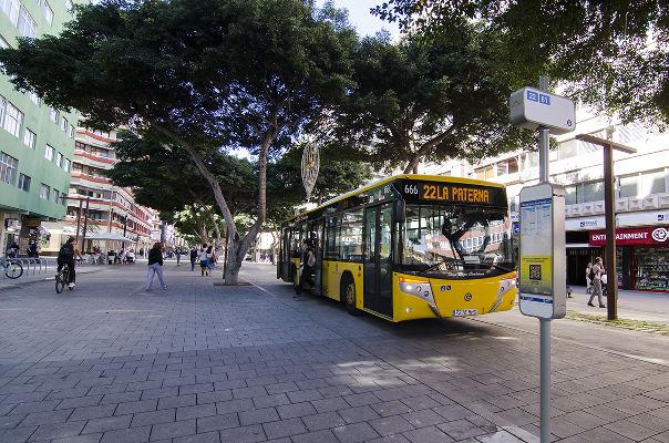 Las líneas 22 y 81 de Guaguas Municipales ya circulan por Mesa y López