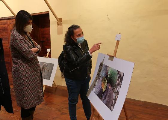 La exposición Salud-Arte. Salud Mental y Arte en Todas Partes