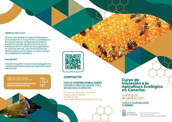 Curso de iniciación a la apicultura ecológica para mejorar la formación