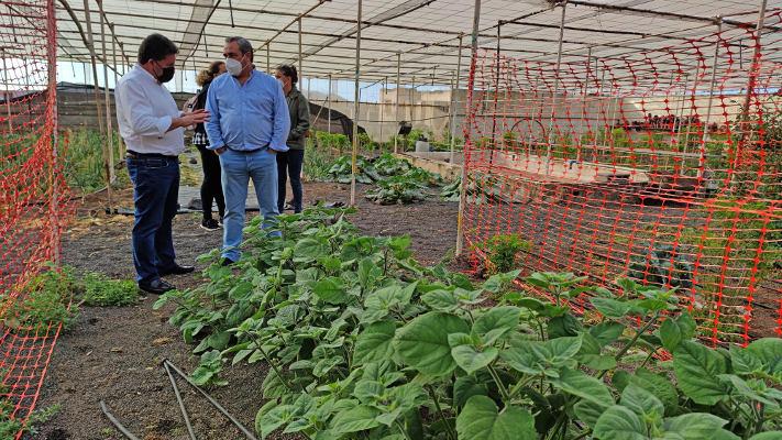 Impulsar la formación en cultivos ecológicos y recuperar variedades
