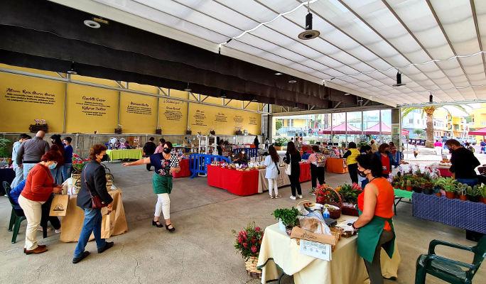 El Mercadillo de Barlovento centrará su temática en la jardinería